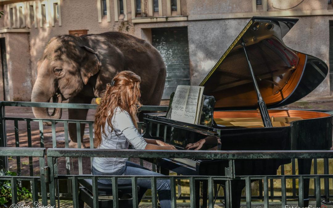 Note dai Villa Borghese Piano Days